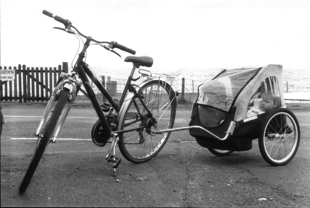 77+ [ 10 Modelli Di Rimorchi E Carrelli Per Bici A Confronto ] - En Bici Voy Vengo, Cercando E ...